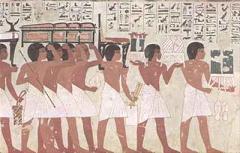 egyiptomi növény ízületi fájdalmak esetén